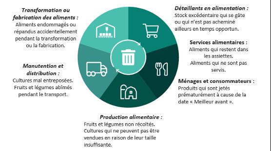 Figure 3 : Exemples de perte ou de gaspillage alimentaire à toutes les étapes de la chaîne d'approvisionnement alimentaire
